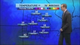 Small Dog Wants To Play During TV Weather Report Funny Cute