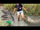 Cô gái xinh đẹp đi bắt cá - Cuộc sống quê tôi 68 | Beautiful girl to catch fish - Life in my country