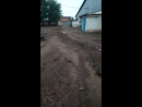 Многолетия проблема с бездорожьем возле школы №3 г. Бузулук
