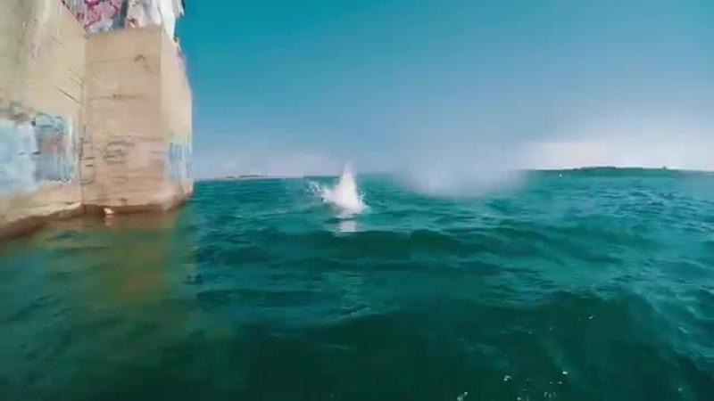 домик прыжки в воду плотины.mp4