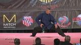Monkey Kung Fu Form Demonstration at 2017 U S Capitol Classics Karate Tournament