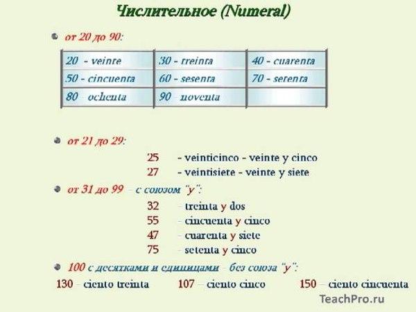 06 Количественные числительные