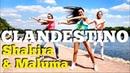 CLANDESTINO Shakira Maluma Zumba fitness Dance choreo by