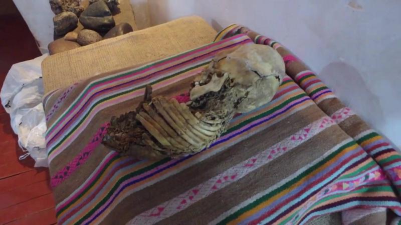видео Brien Foerster -..Huayqui, удивительный маленький скелет в музее Аndahuaylillas недалеко от Куско Перу. Общие результаты Д
