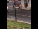 Голые мексиканцы на Будённовском Береговой 23 6 2018 Ростов на Дону Главный