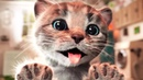 ПРИКЛЮЧЕНИЕ МАЛЕНЬКОГО КОТЕНКА мультик смешное видео для детей мультфильм про котиков ММ