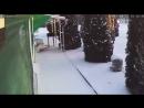 В деревне на данный момент 22.01.18 г. Снято видео камерой наблюдения.