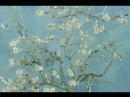 Цветы Винсента Ван Гога