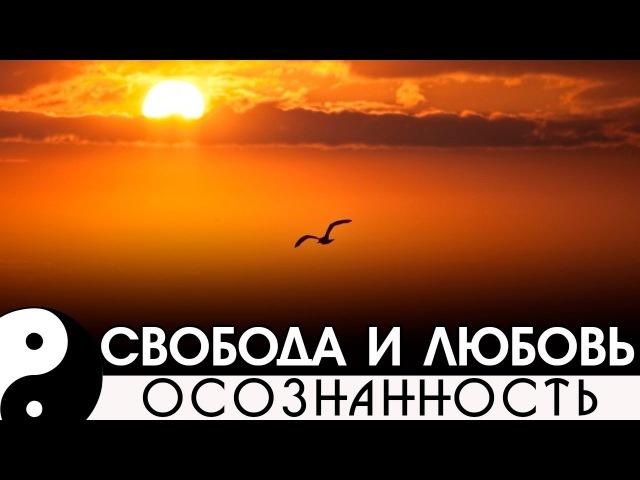 Свобода и любовь. [NikOsho. Медитации]