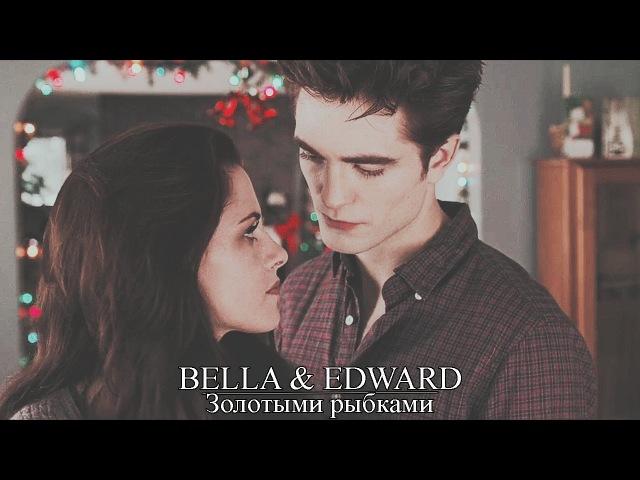 ► Bella Edward Золотыми рыбками