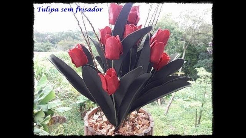 Tulipa EVa sem frisador