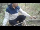Классная ловушка для ловли ФАЗАНА 100 3-ЭТАП