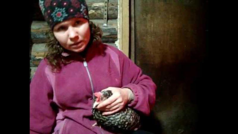 Лечение курицы перцем Любовь спасёт мир