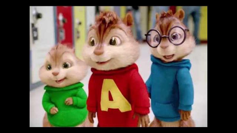 CZADOMAN - Chodź na kolana ( Alvin i Wiewiórki )