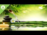 Clean Energy Positive Vibration, Meditation Music, Nature Sound.