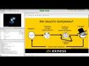 Вебинар В Крутского Учимся писать торговых роботов на MQL4 часть 1