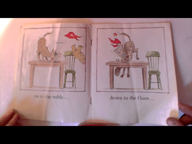 This is the Bear and the Picnic Lunch, Read aloud, in Queens English