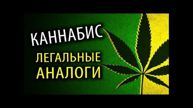 Марихуана ЛЕГАЛЬНЫЕ Замены Против Наркомании