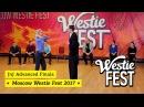 JnJ Advanced Final Павел Катунин Алла Мосякина Westie Fest 2017