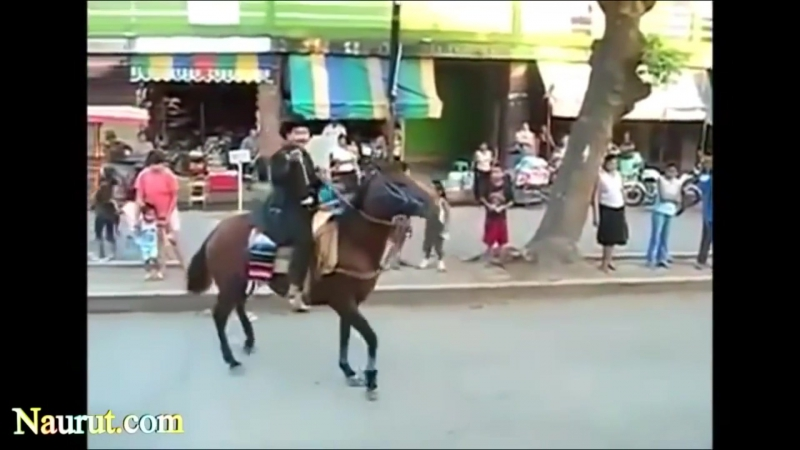 funny videos funny clips amp funny pictures break