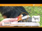 15_Ferplast - Как правильно снять мерки с вашей собаки - RU