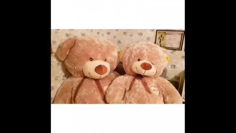 Большой плюшевый мишка. Мягкие игрушки медведи. Подарок в наличии СПб