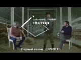 Дальневосточный гектар. 3 серия. Еврей-казак