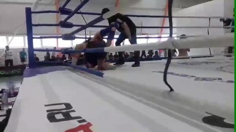MMA (в красном)