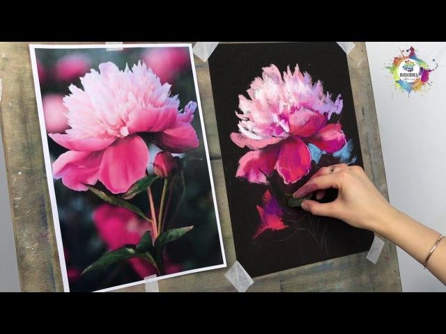 |ВИДЕОУРОК| Сухая пастель - Юлия Фадюшина Пион на чёрном фоне