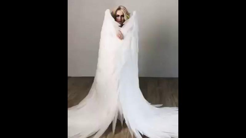 огромные крылья ангела лисья мастерская видео от клиента