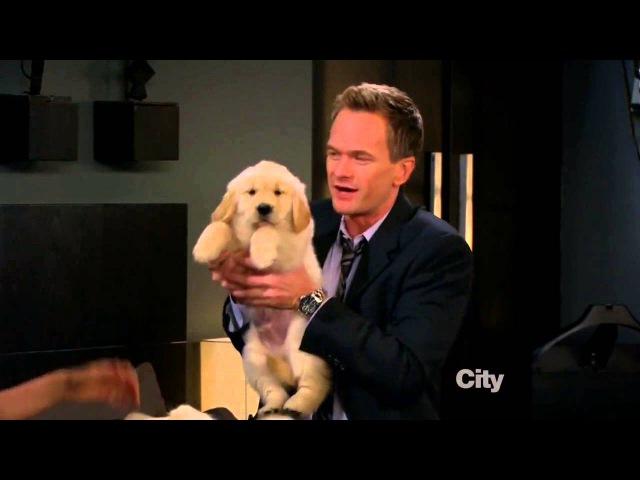 Barney Stinson - Puppies surprise