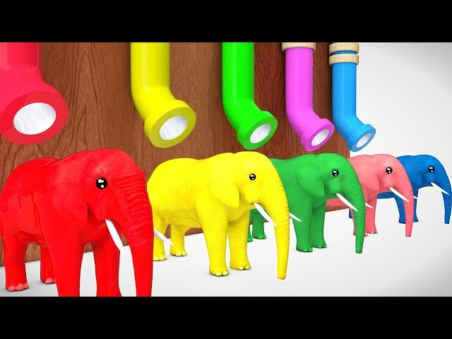 Learn Color Elephant Animal With Drink Cocacola Cartoon for Kids Nursery Rhymes