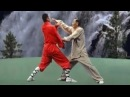 Shaolin kung fu combat 36 methods