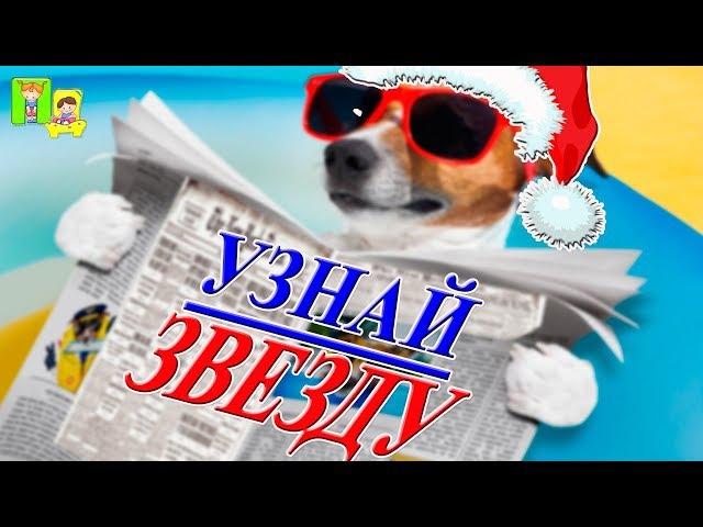 🎄🎅МАСКИ ШОУ НА НОВЫЙ ГОД. Их знает каждая собака - веселый конкурс на новогодн ...