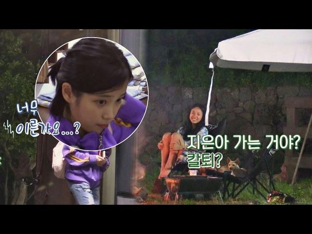 (아이 신나) 양 손 가득 간식 안고 칼퇴 하는 아이유♡ 효리네 민박 5회
