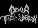 Devour the Unborn - Bitch in a Ditch (DEMO VERSION 2011)