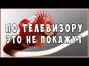 Паразиты Глисты Гельминты в организме человека Жизненно важно знать всем Смотрите