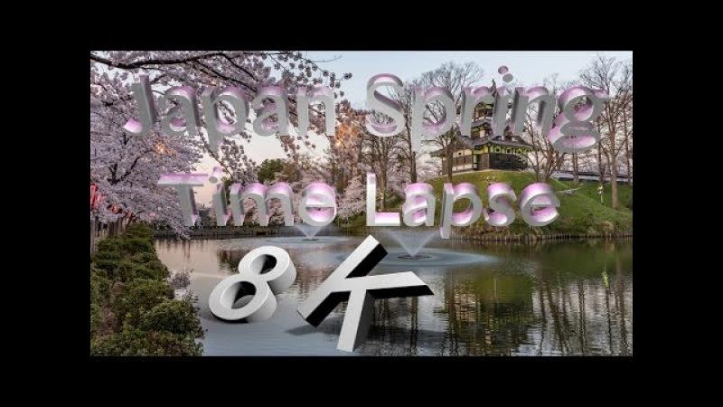 [8K 4320P HDR] Japan Spring Time Lapse in 8K ハイダイナミックレンジ日本の春 8K映像