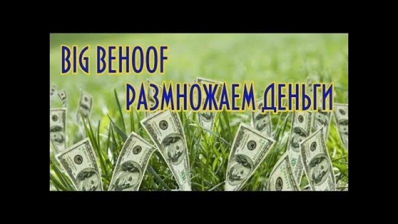 BIG BEHOOF размножает деньги Мой доход и вывод денег с двух аккаунтов