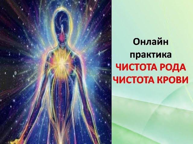 Онлайн практика ЧИСТОТА РОДА ЧИСТОТА КРОВИ Елена Баршева