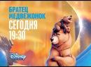 ЗВЕРОБУК. Братец медвежонок Канал Disney, 26.01.2017 Анонс