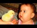 Видео для детей. ПРИКОЛЫ С ДЕТЬМИ 2016 Смешные дети Funny kids Funny Kids Videos 1 NUNI