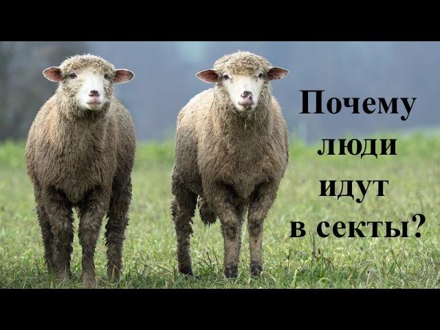 Не будьте частью стада.