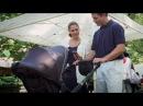 4moms Moxi - коляска-трансформер со встроенным генератором Мокси