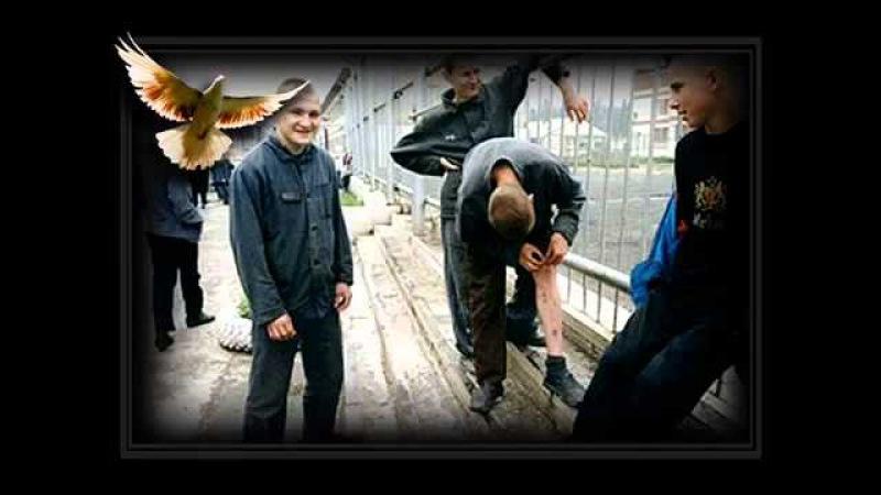 ГЛАВНОЕ ХОТЬ ГДЕ БЫТЬ ЧЕЛОВЕКОМ Крестовый туз 2012