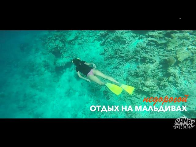 Отдых на Мальдивах - фридайвинг на о-ве Камаду