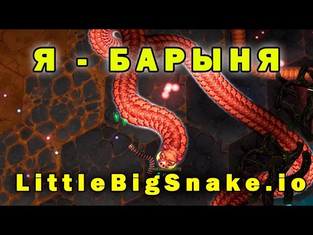 БАРЫНЯ-СУДАРЫНЯ►Игра на терпение►Маленькие Большие Змейки