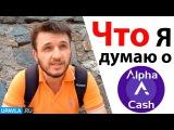Alpha Cash Открылся! - Будь Первым! Мой ОТЗЫВ о проекте...