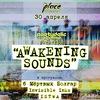AWAKENING SOUNDS