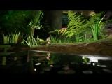 Moss  E3 2017 Reveal Trailer  PlayStation VR